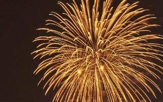A big golden firework in the sky.
